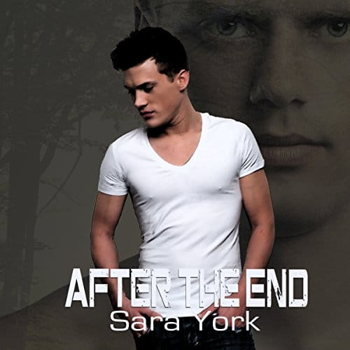 After the End By Sara York