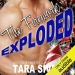 The Firework Exploded By Tara Sivec