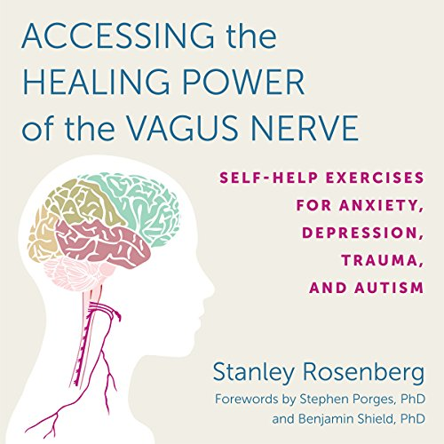 Accessing the Healing Power of the Vagus Nerve By Stanley Rosenberg, Benjamin Shield